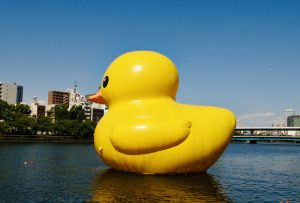 Rubber Duck Project 2020